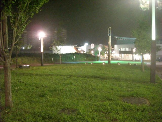 DSCN3884.jpg
