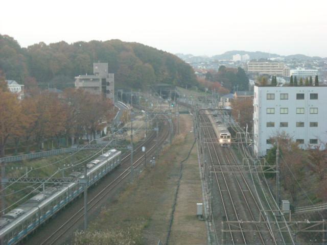 DSCN7160.jpg