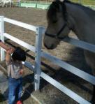 馬ちゃんの名前は「ハイジ」