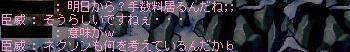 20060328212804.jpg