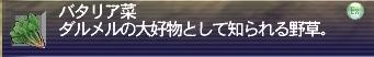 050608_04.jpg