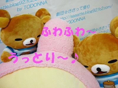 DSCN5190-s1.jpg