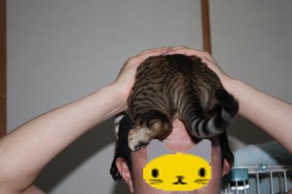 sasukexxx349-2.jpg