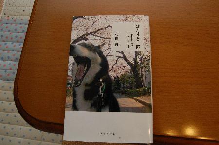 20091017fujimaru6.jpg