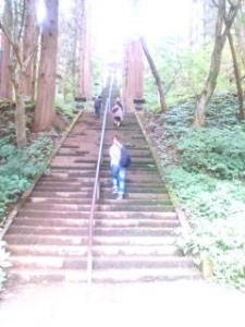宝光社への階段