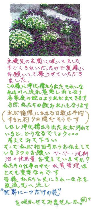 20070518003852.jpg