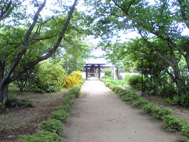 中蔵院 1