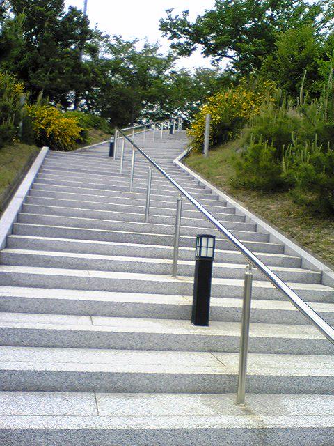 中蔵院 11