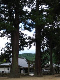加茂総社宮 10