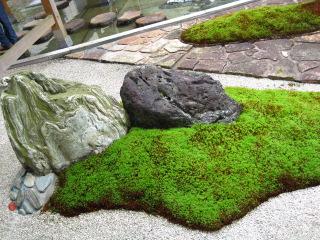 友琳の庭 8