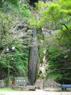 絹掛けの滝 11