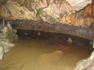 井倉洞 14