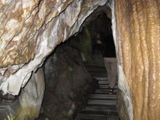 井倉洞 26