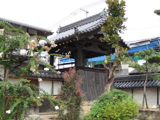 津山 妙願寺 8