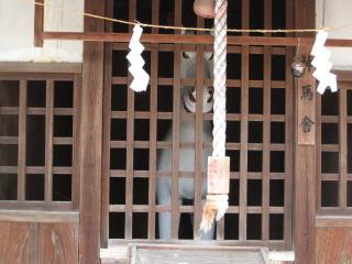 津山 徳守神社 5