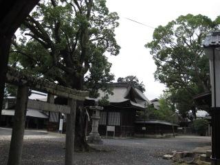 津山 徳守神社 18
