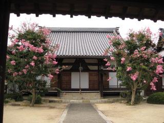 津山 大円寺 1