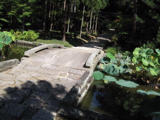 曹源寺 6