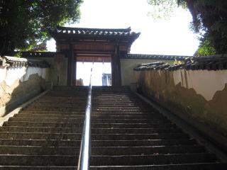 本蓮寺 31