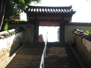 本蓮寺 33