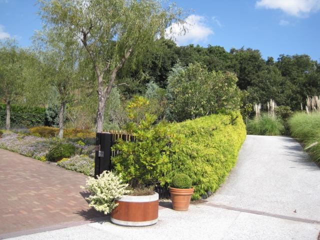 イギリス庭園 1
