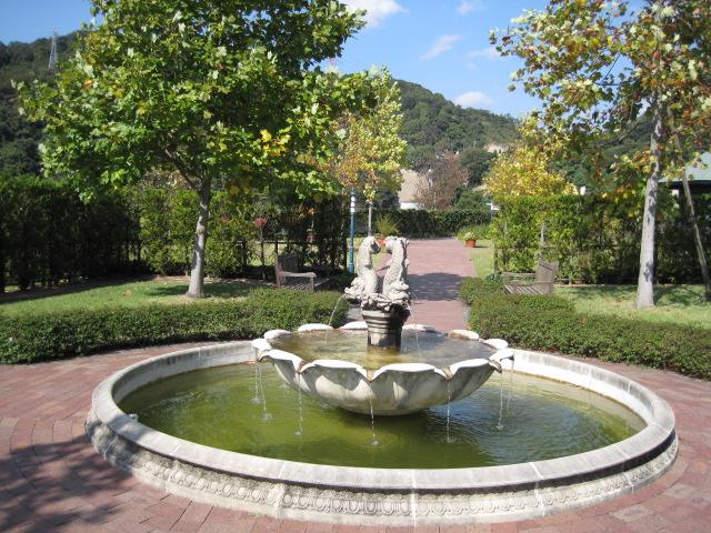 イギリス庭園 12