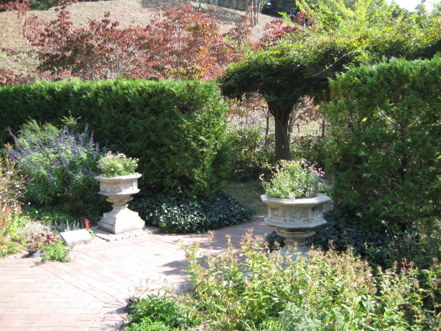 イギリス庭園 24