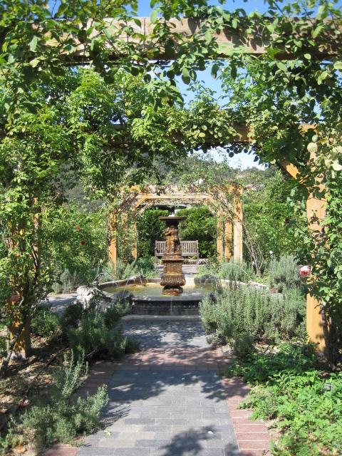 イギリス庭園 34