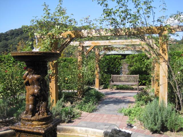 イギリス庭園 37