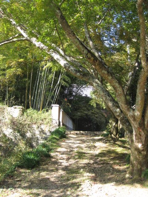 願興寺 8