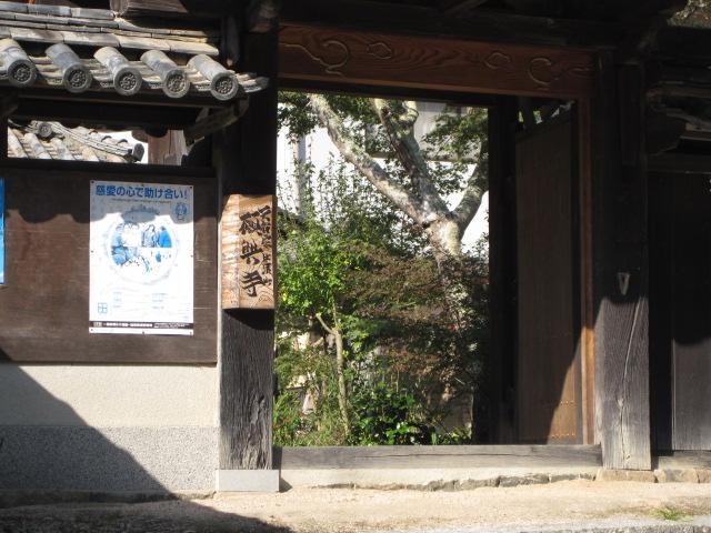 願興寺 9