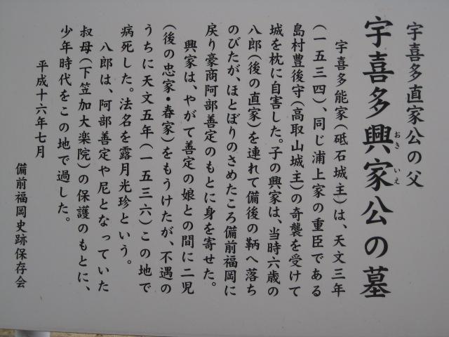 妙興寺 8
