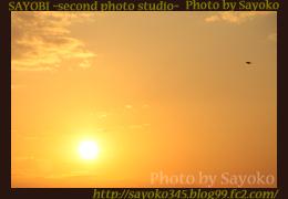 二番目の小夜子の写真館♪0162