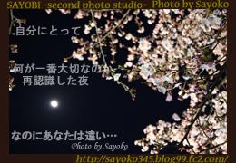 二番目の小夜子の写真館♪0165