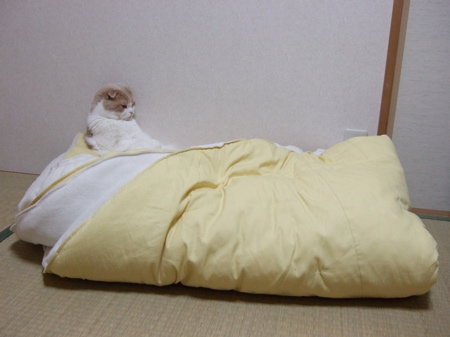 futon3