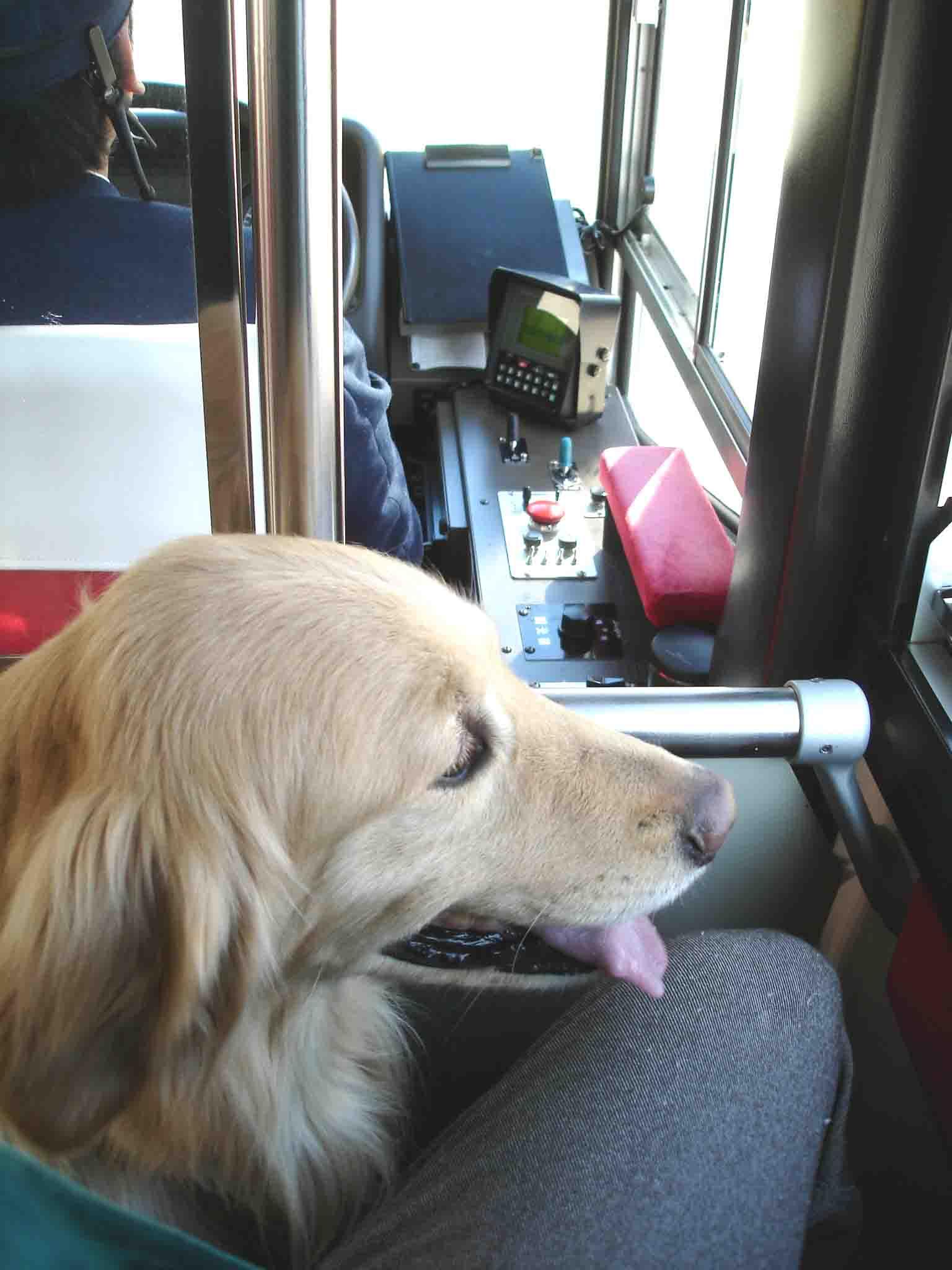 長野山岳レスキュー 「バスは初めてでした」チャンス