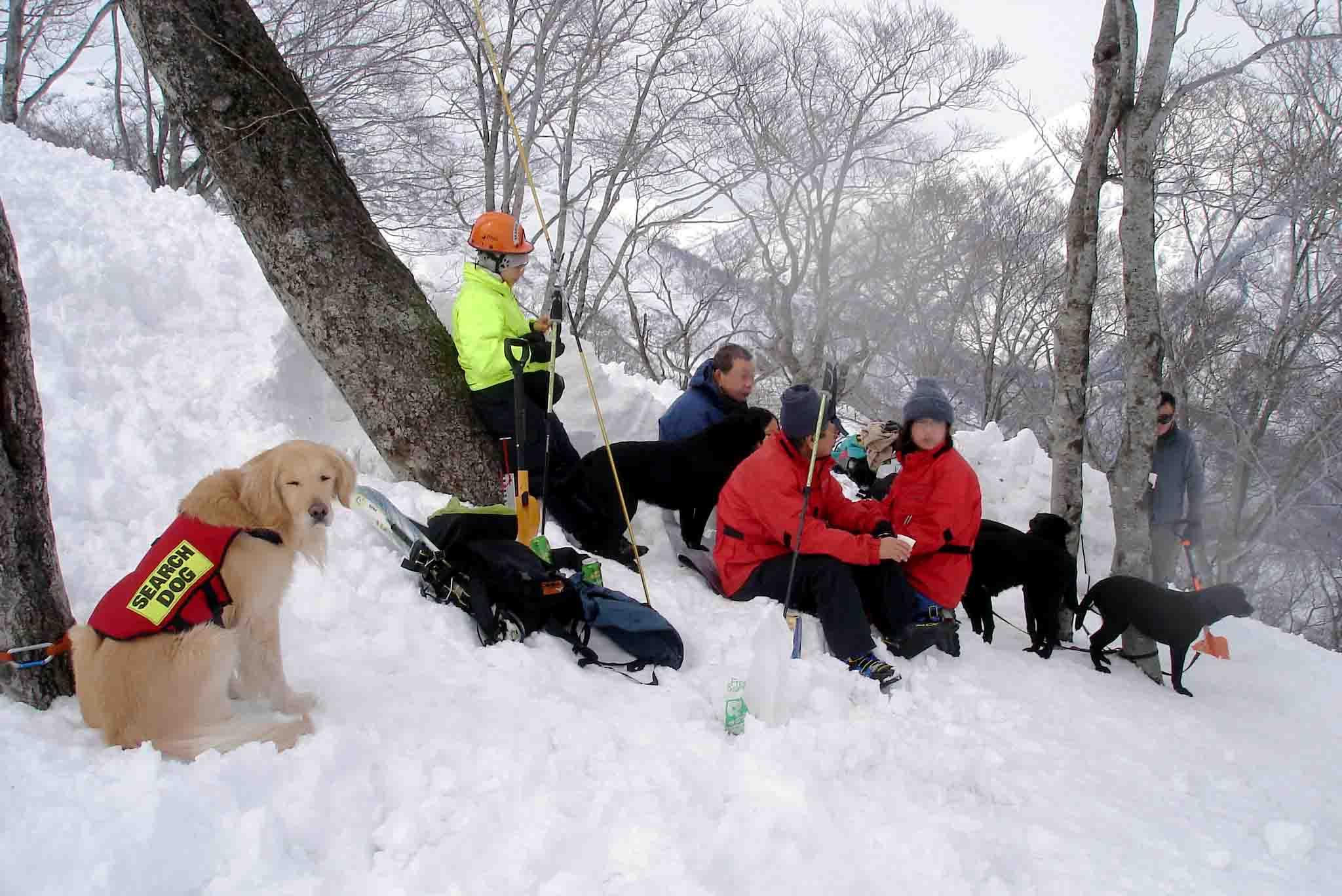 Dsc00304 雪上で楽しく休憩