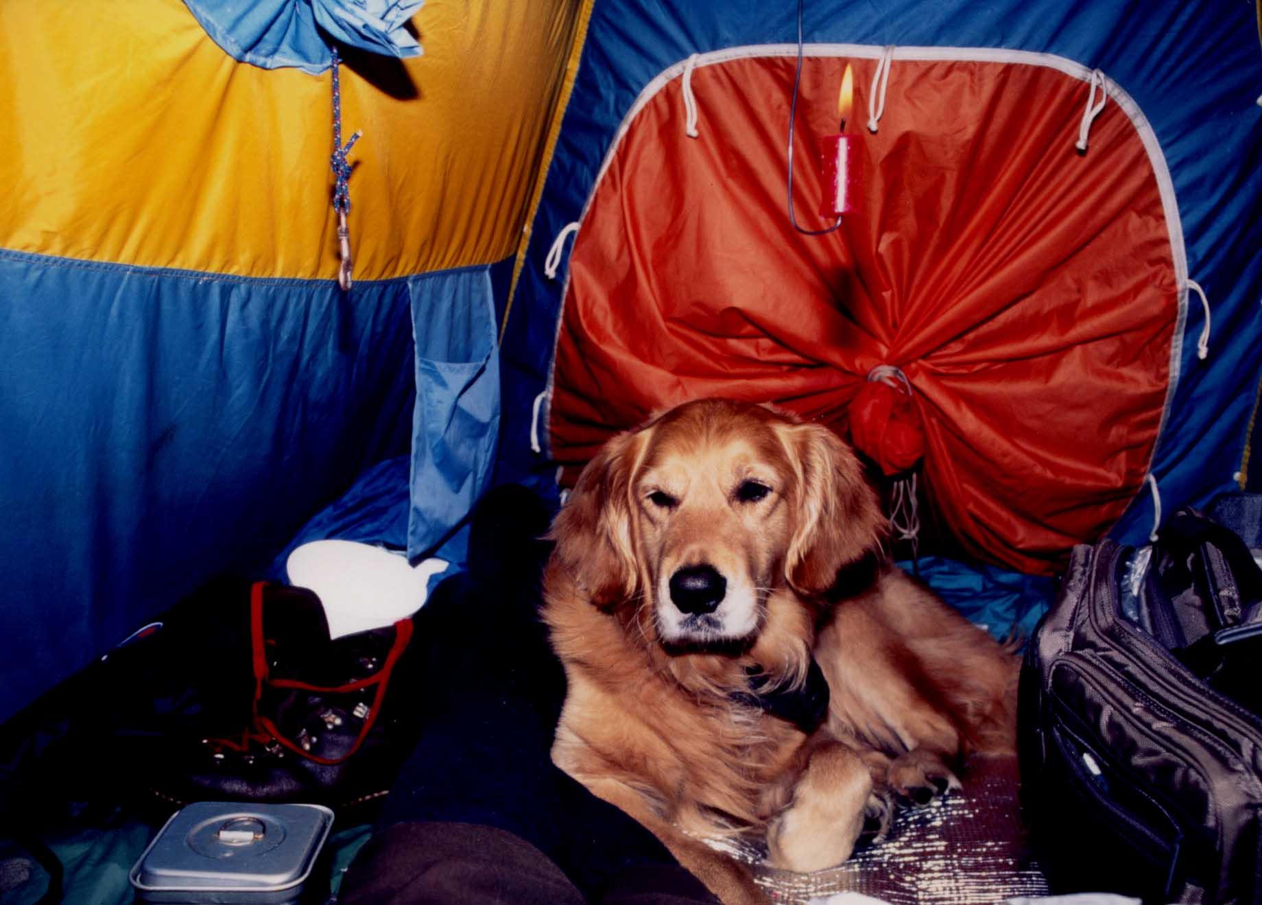 テントの中で