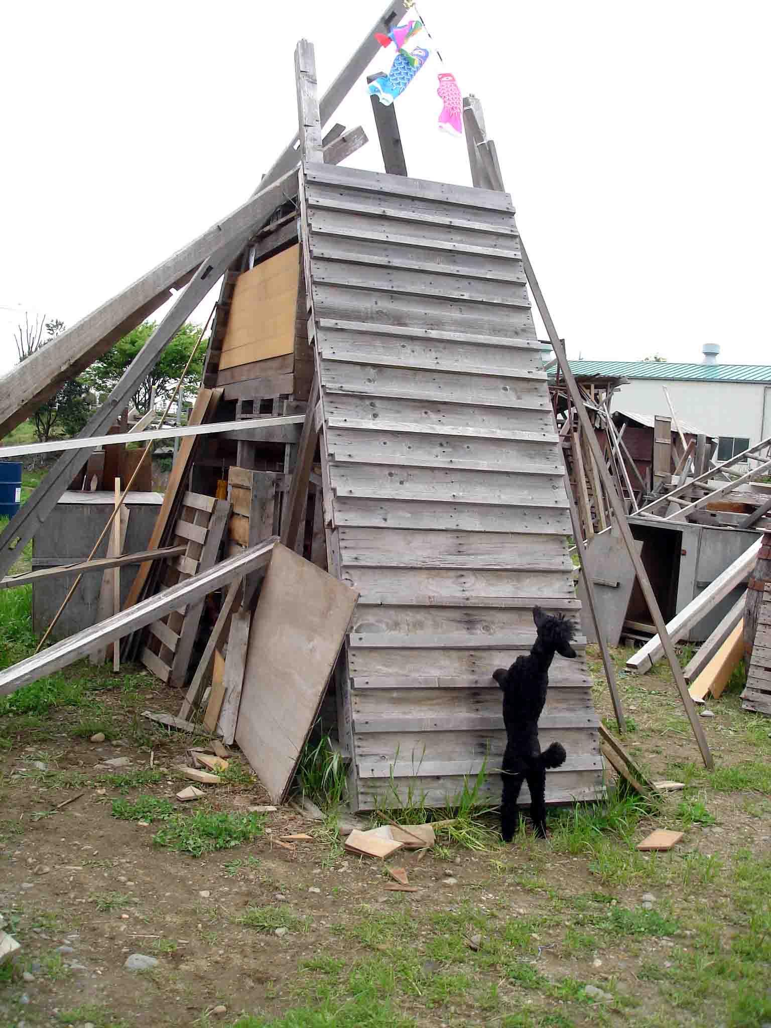 トラジのピラミッド捜索②(上方からの臭いを意識)
