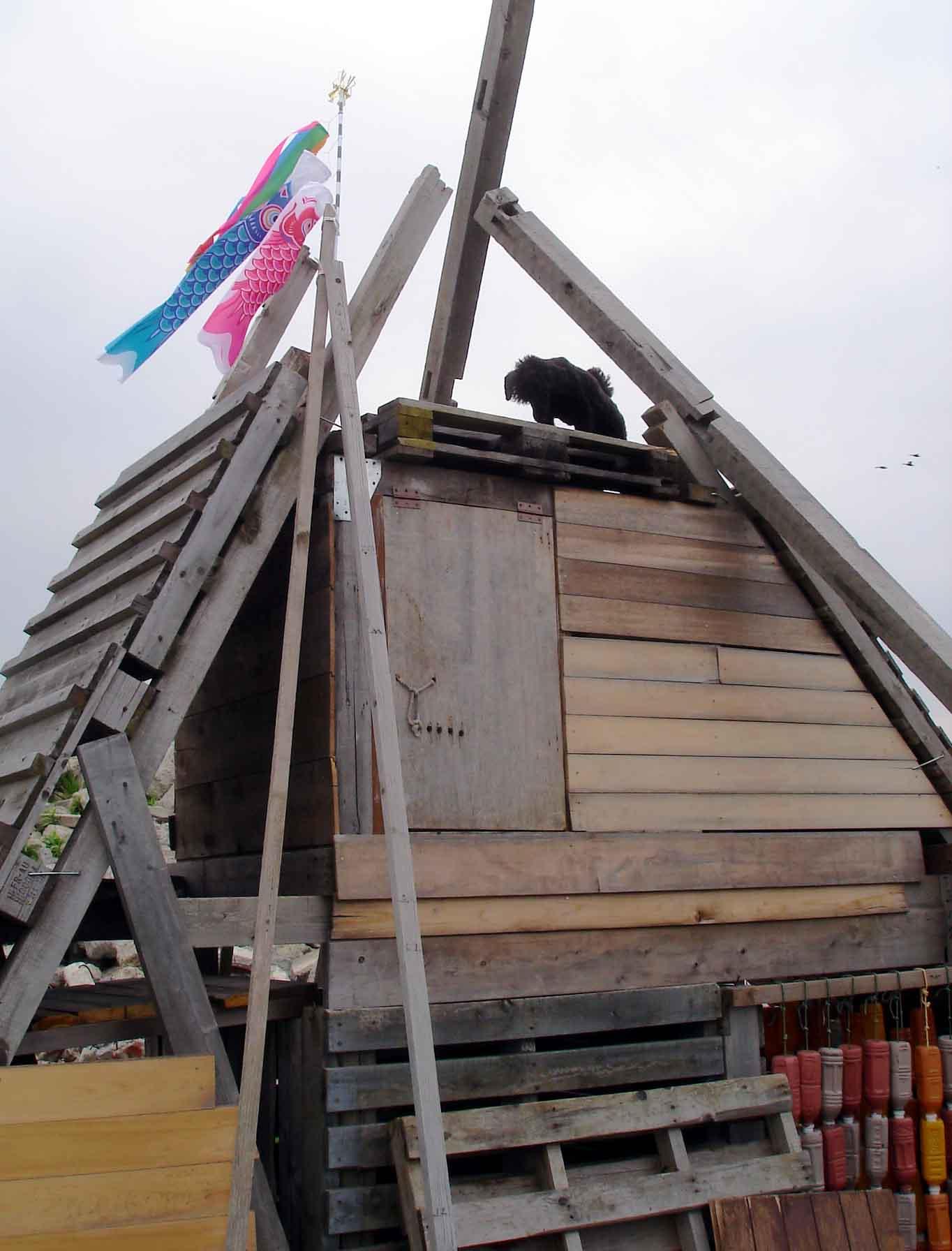 トラジのピラミッド捜索④(上部の臭いの強いところへ到着したが・・・)