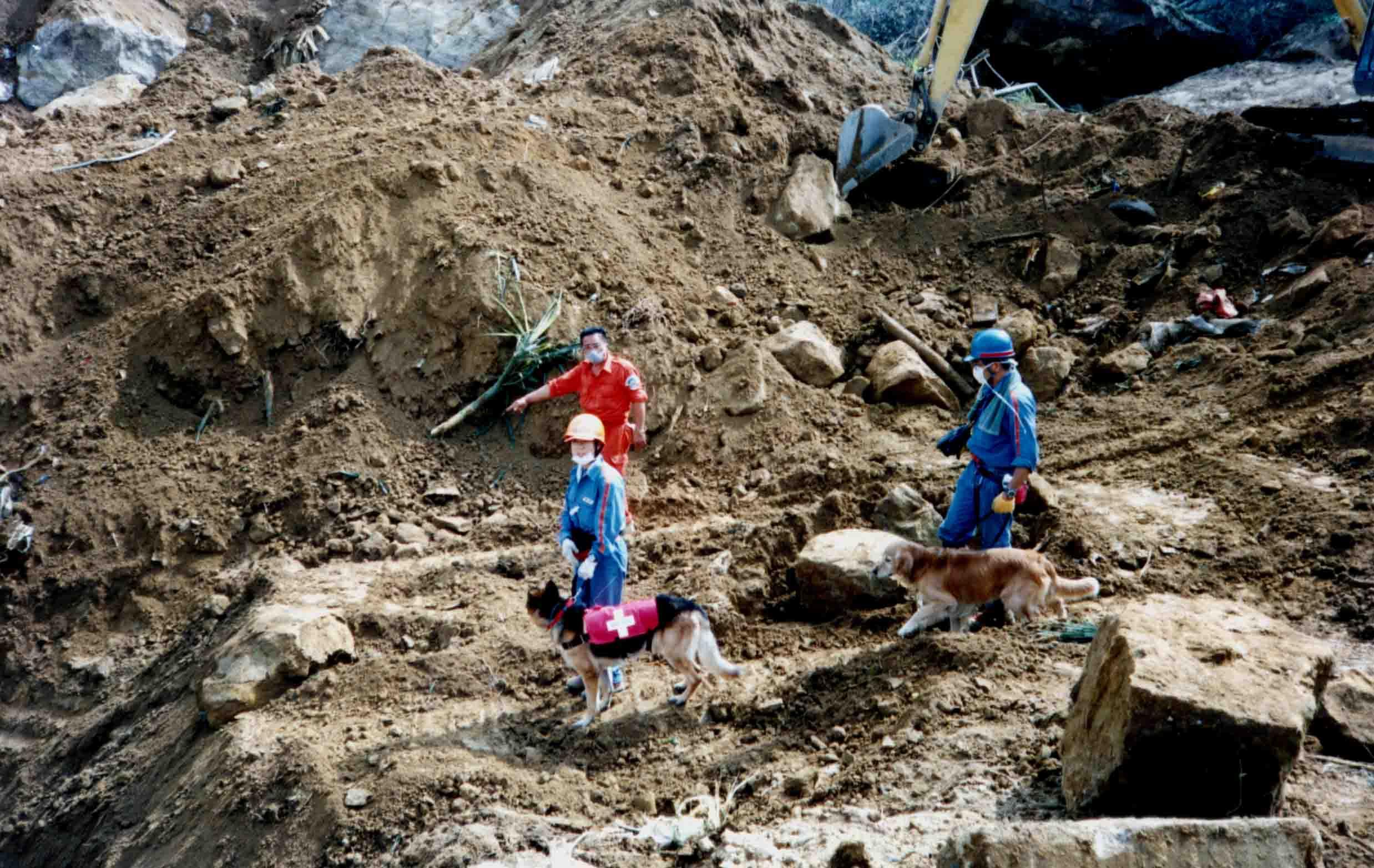 岩屑埋没地帯重機掘下げ現場へ
