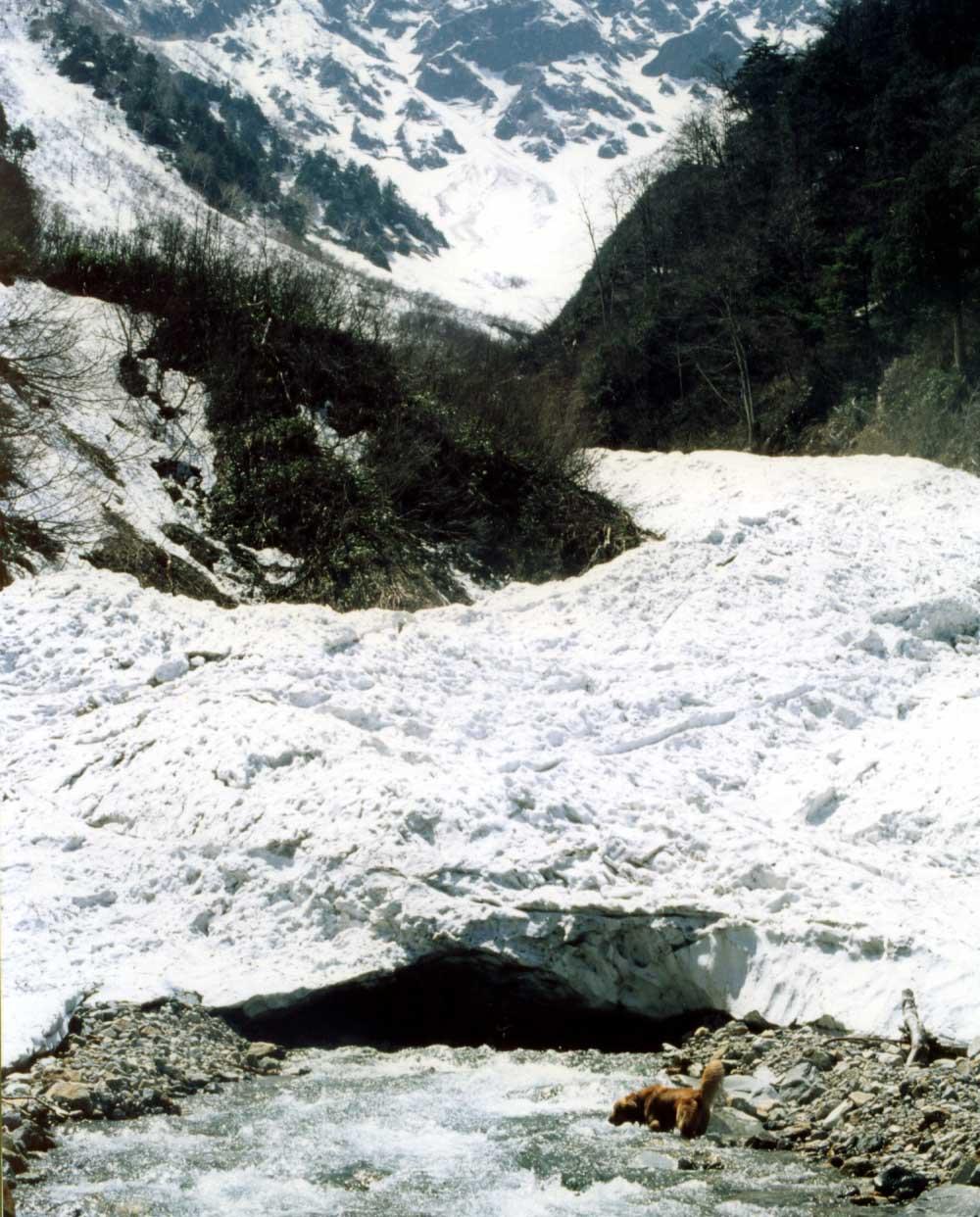 雪渓末端の谷間で
