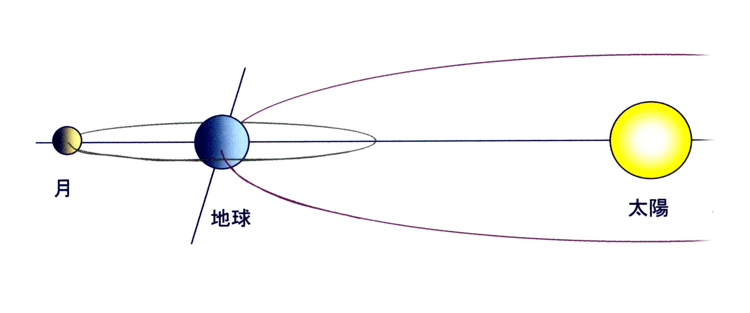 夏至の太陽と地球と月