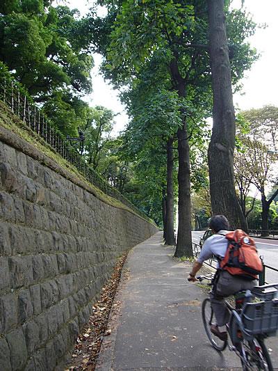 赤坂御用地の明治記念館側