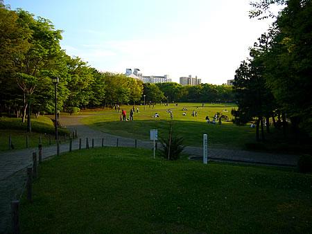 多摩中央公園