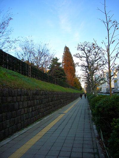 赤坂御用地横