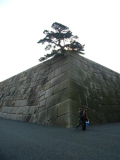 江戸城天守閣跡