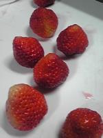 イチゴ大福3