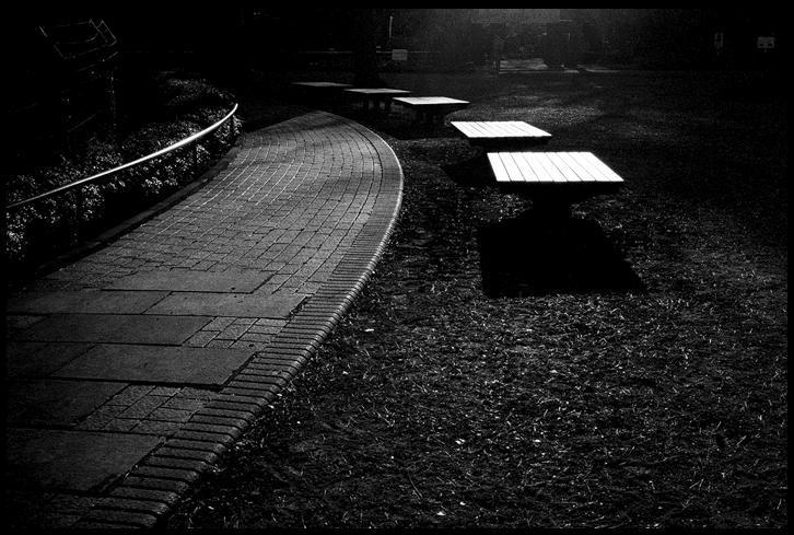 stwinterpark.jpg