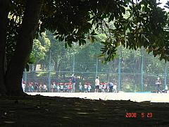 20080523.jpg